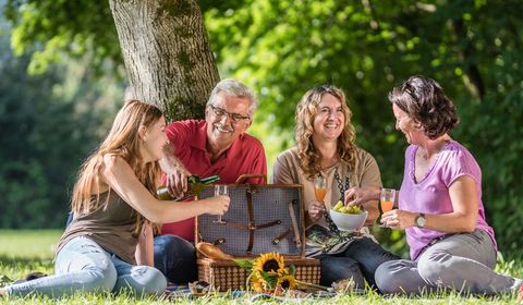 Picknick am Donaustrand