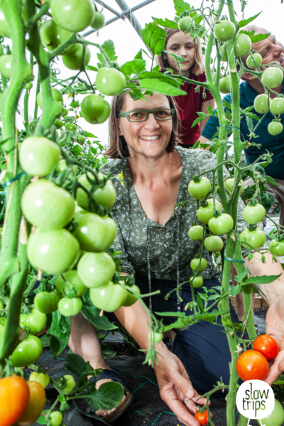 Frei & unbeschwert sein am Bio Bauernhof - Biohof Starzhofer